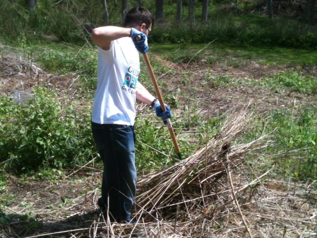 OnSIP team member raking